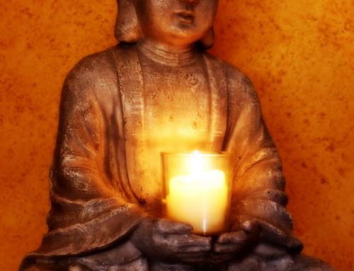 Katzenpsychologie-Wedel: Buddha & Balance 2018