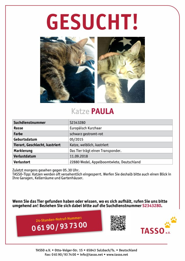 PAULA, TASSO_Suchplakat_S2343280